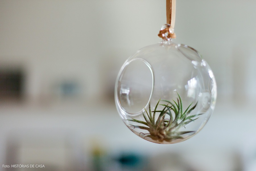18-decoracao-sala-estar-domo-vidro-air-plants-plantas