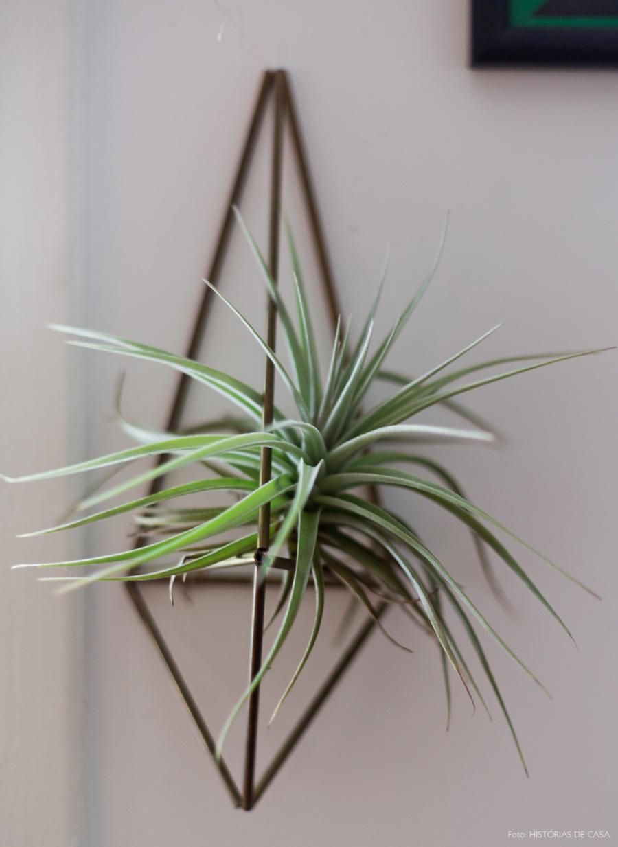 39-decoracao-suporte-planta-air-plant-ar