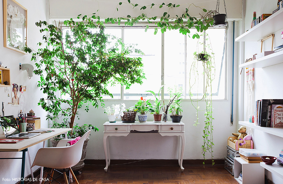 21-decoracao-plantas-apartamento-home-office