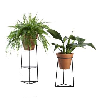 suporte botânico hera – dupla